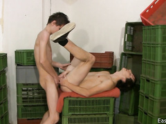 Amateur gays blowjob and bareback session