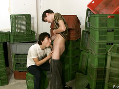 Insatiable man is blowing hard member